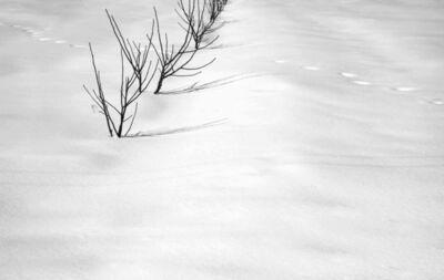 Abbas Kiarostami, 'Snow No. 7', 2002
