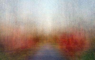 Eeva Karhu, 'Path (moments) Autumn 3', 2019