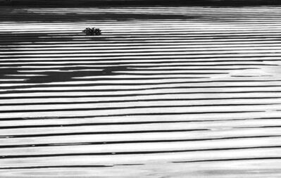 Flor Garduño, 'Lago abstracto', 2017