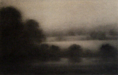 Nicolas Poignon, 'Eau-Arbres ', 2011