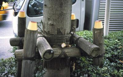 Gabriel Orozco, 'Flan Poles', 2002