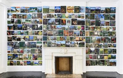 Luis Molina-Pantin, 'Jardin Vertical ', 2012-2013