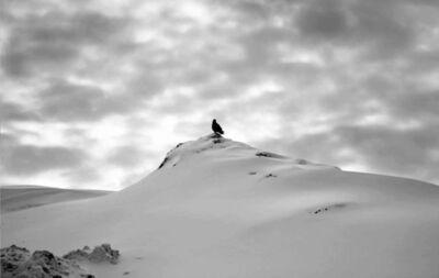 Abbas Kiarostami, 'Snow No. 23', 2002