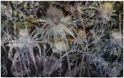 Christine Neill, 'Just Weeds', 2014-2015