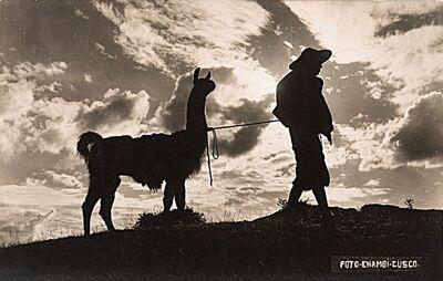 Martín Chambi, 'El Indio y su Lama, Cuzco (Perù)', 1934
