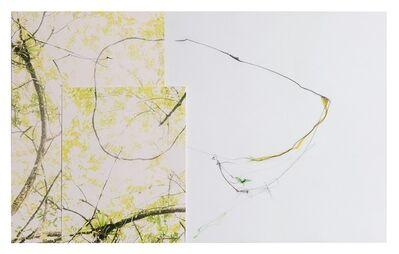 Sandi Haber Fifield, 'Untitled (LF16 #107)', 2016