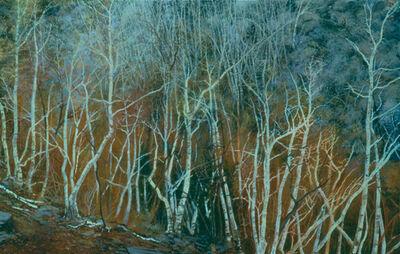 Douglas James Maguire, 'Winter Fire', 1990