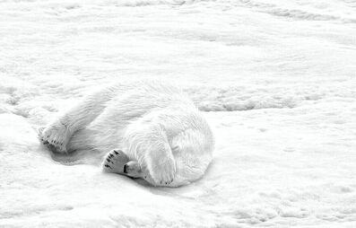 Michael Aw, 'It's Nap Time'