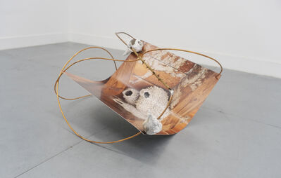 Suzanna Zak, 'A Fine Example of the Interfacing of Human and Barn Swallow Cultures', 2021