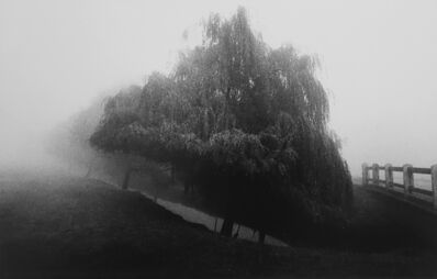 Michael Kenna, 'Canal-Richmond Park-Surrey, England', 1979