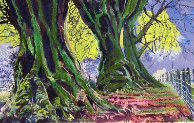 Philippa Beale, 'Beech tree hedge, Exmoor', 2020