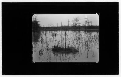 Harry Callahan, 'Detroit (marshland)', 1941