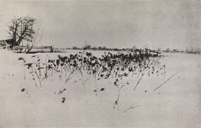 Peter Henry Emerson, 'Snow Garden, from Marsh Leaves', 1895