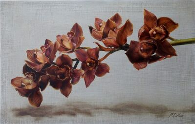 Narelle Zeller, 'Cymbidium Orchids II', 2020