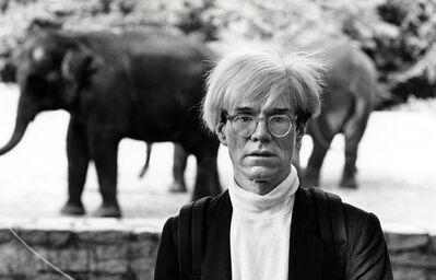 Ron Galella, 'Andy Warhol at the Bronx Zoo', 1983