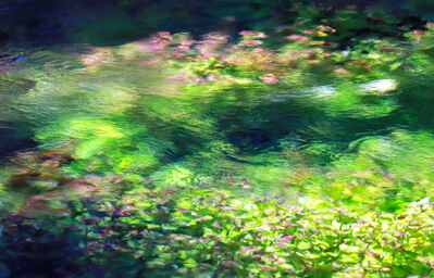 Larry Garmezy, 'Between the Shadows - Abstract / impressionist water photography, waterscape, floral, natural abstraction, Rocky Mountains, in green, pink, and blue', 2019