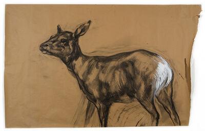 Nicola Hicks, 'Untitled (Deer 1)', 2009