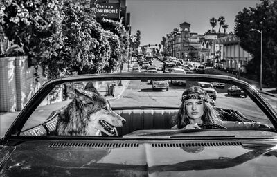 David Yarrow, 'Chateau Marmont', 2019