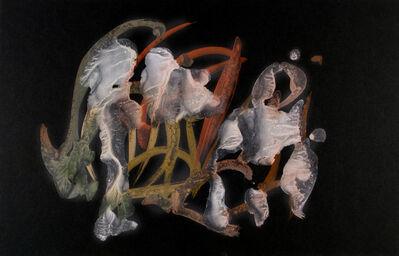 Frederick Sommer, 'Untitled', 1955