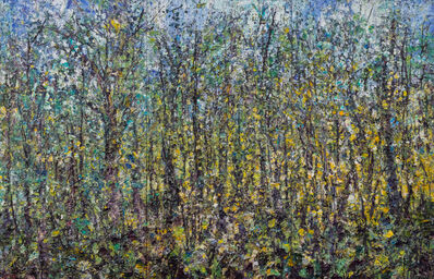 Jim Reid, 'Forest 20-9-11, Remnant of an Ancient Wildness', 2011