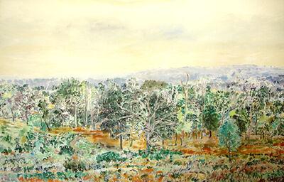 Rebecca Perehudoff, 'Untitled Landscape'