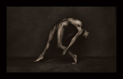 Brian Bowen Smith, 'Ivy', 2015