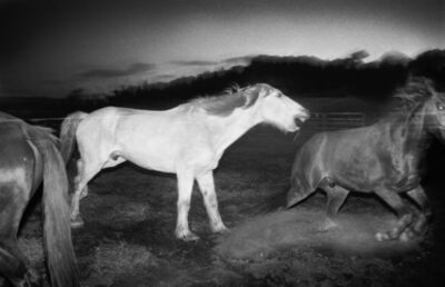 Trent Parke, 'After the rodeo. Minutes to Midnight.', 2004