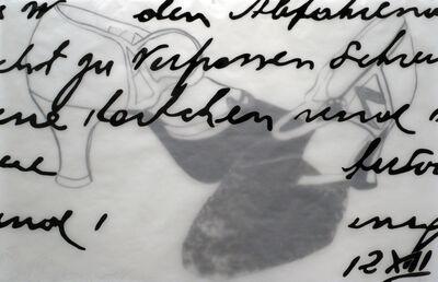 Bunny Burson, 'Untitled 2 (Hidden in Plain Sight series)', 2012
