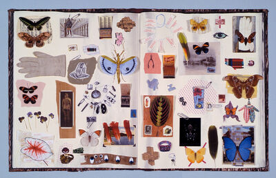 Jane Hammond, 'Scrapbook', 2006