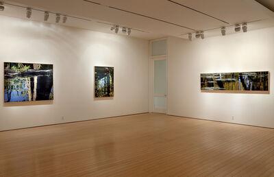 Adrian Deckbar, 'Transformation Gallery View', 2014