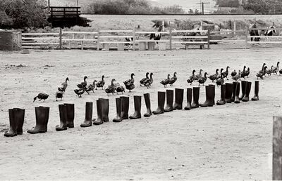 Eleanor Antin, '100 Boots in a Field, Route 101, California', 9