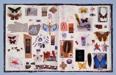 Jane Hammond, 'Scrapbook', 2003