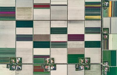 Bernhard Lang, 'Aerial Views, Tulip Fields 01', 2016