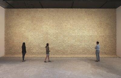 Olafur Eliasson, 'Moss wall', 1994