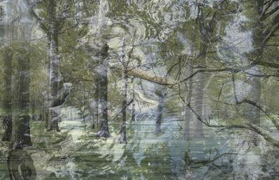 Frederick Hodder, 'Central Park', 2014
