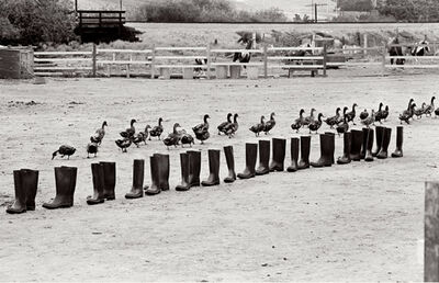 Eleanor Antin, '100 Boots in a Field', 9