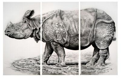 Rick Shaefer, 'Rhino', 2012