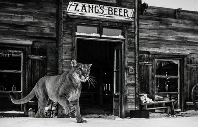 David Yarrow, 'It's Closing Time', ca. 2015