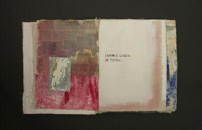 Francisca Aninat, 'Painting Book Series', 2018
