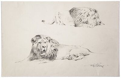 Wilhelm Lorenz, ' Study of Lion', 20th Century