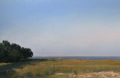 Adam Straus, 'Habitat, Edge of Peconic Bay', 2005