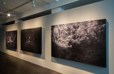 Robert Zhao Renhui, 'A Guide to the Flora and Fauna of the World', 2013