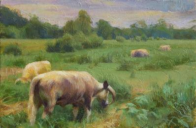 Adrienne Stein, 'Oxford Cattle', 2021