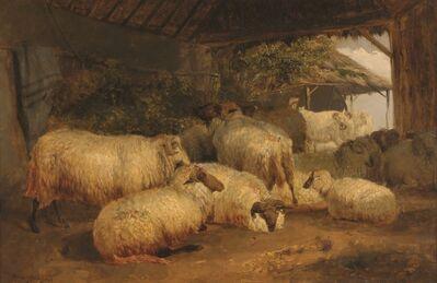 Rosa Bonheur, 'Sheep', 1822-1899