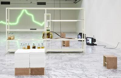 Po-Chih Huang, 'Five Hundred Lemon Tress : An Organic Archive '