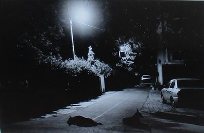 Gauri Gill, 'In Night', 2008
