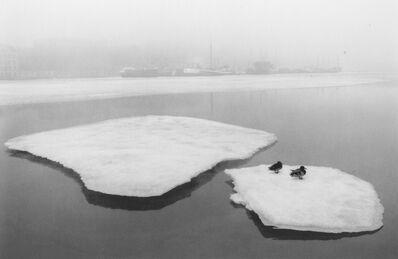 Pentti Sammallahti, 'Helsinki, Finland', 1973