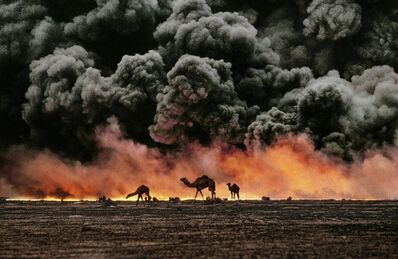 Steve McCurry, 'Camels and Oil Fields, Al Ahmadi, Kuwait, 1991', 1991