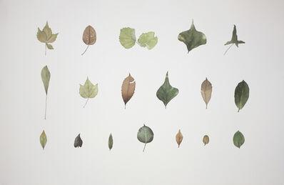 Guo Hongwei 郭鸿蔚, 'Plant No. 11', 2012