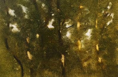 Pamela Sztybel, 'Landscape (Trees)', 2019